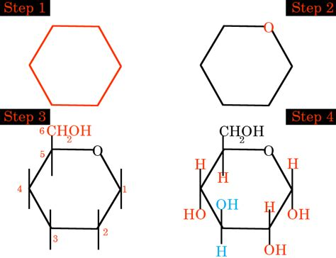 Molecule Drawer by Draw The Structure Of A Glucose Molecule Dbriers