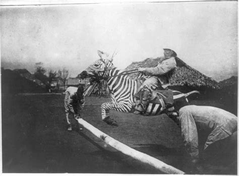 that famous photo of teddy roosevelt riding a moose is fake funny vintage photos vintage everyday