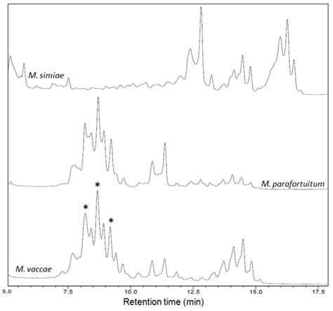 interaction of pattern recognition receptors with mycobacterium tuberculosis hplc protocol for identification of mycobacterium spp
