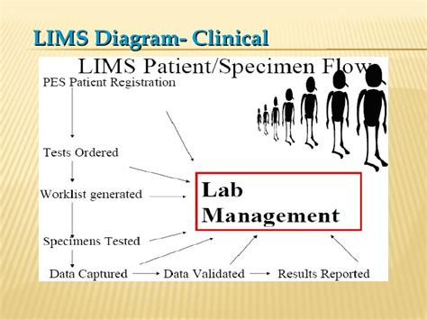 laboratory information management system wikipedia the image gallery lim s diagram