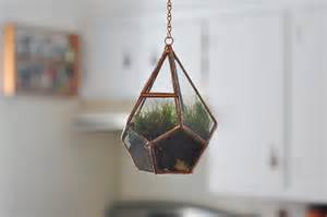 hanging teardrop glass terrarium with door moss terrarium