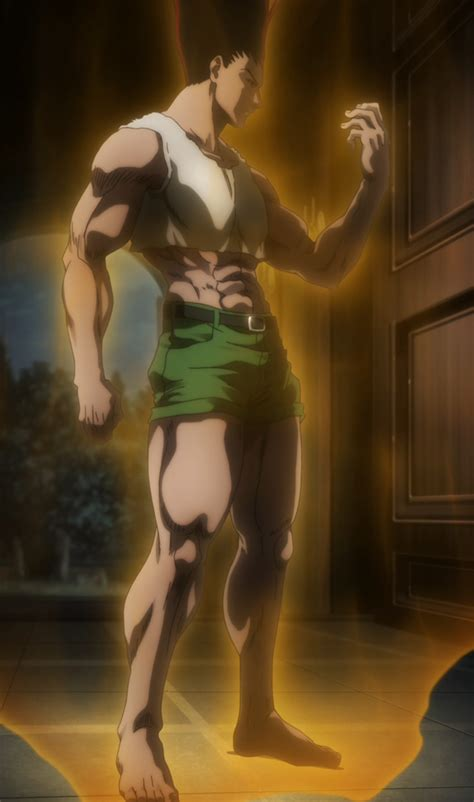 gon freeks hunter x hunter wiki fandom powered by wikia image adult gon anime png wiki hunter x hunter