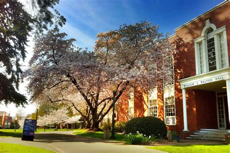 Willamette Mba Admission Requirements by Willamette Scores Costs And Admissions