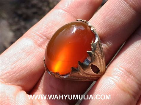 Batu Akik Orange Raflesia 2 batu cincin raflesia mata kucing bengkulu kode 401