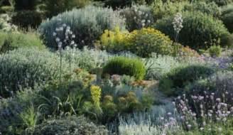un jardin pour un jardin sans arrosage