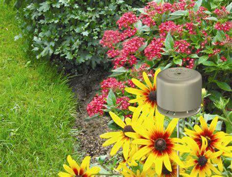 Deer Repellent For Gardens by Get Rid Of Deer With Sweeney S Deer Repellent