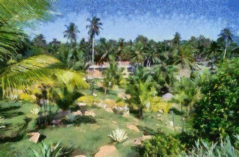 Landscape Photography Kerala Scenic Photos Scenery Photos Of Kerala