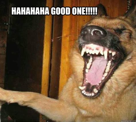 Dog Laughing Meme - funny dog laughing memes