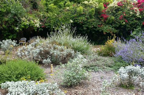 landscape design san diego landscaping ideas