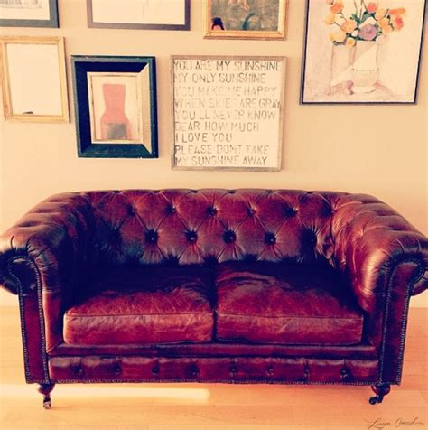 fleas in leather couch 17 best images about thrift store locations on pinterest