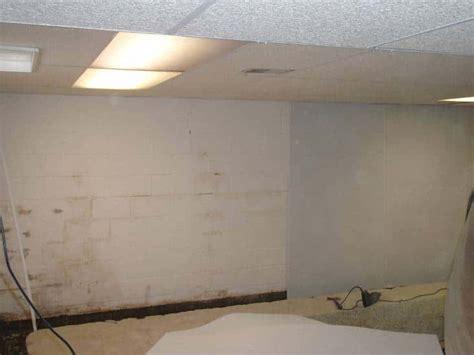 mold mildew in canton ohiogarrett basement waterproofing