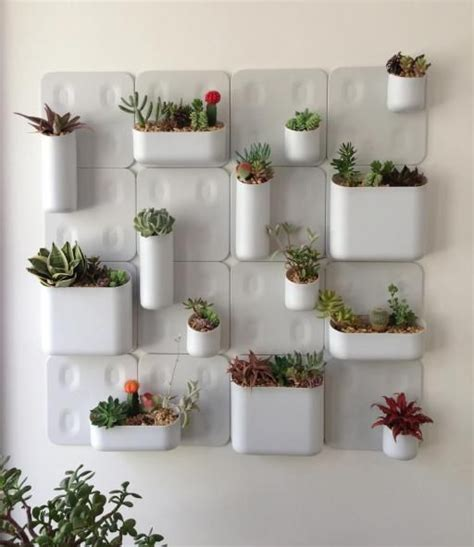 in door plant put in pot vide 20 ideas on how to put plenty of plants inside the house