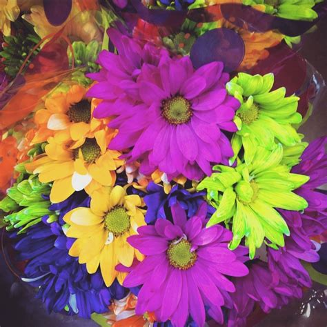 why are flowers brightly colored why don t you happy pretty sweet