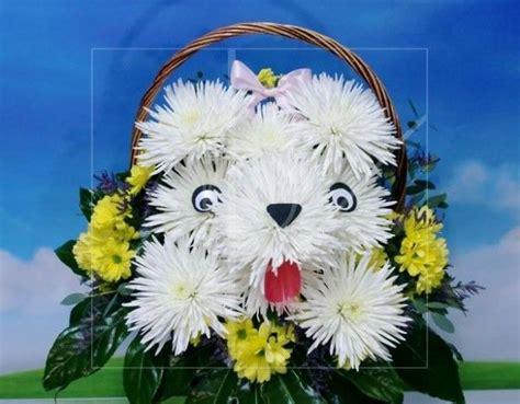 imagenes flores originales perrito hecho con flores naturales en cesta y preparado