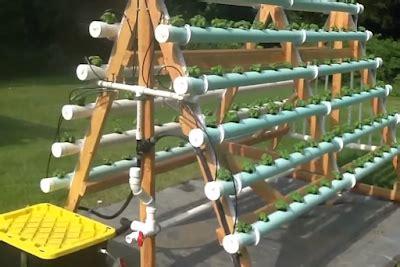 membuat hidroponik dari talang air january 2017 kebun sayuran