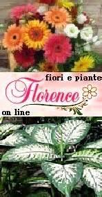 spedire fiori roma vendita fiori spedizione fiori a firenze
