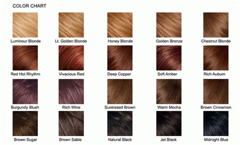 Different Types Of Brown Hair by Brown Hair Color Chart 2013 Hairstyles Haircuts