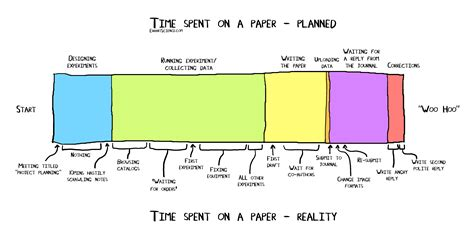 How To Make A Timeline On Paper - infographic showing the timeline of a typical academic