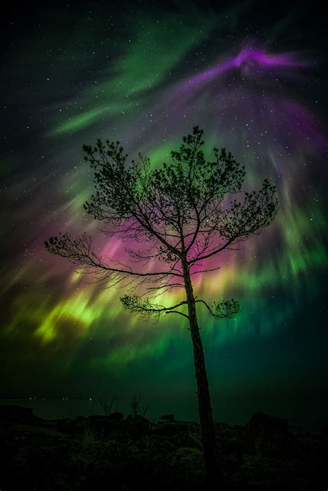 by chris oliphant on 500px amazing photos pinterest chris amazing night in em 228 salo finland by jari johnsson on 500px