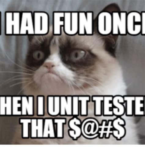 Grumpy Cat Meme I Had Fun Once - had fun onci hen i unitteste that satts hen meme on sizzle