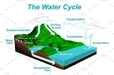 water cycle diagram with explanation the water cycle diagram illustrations creative market