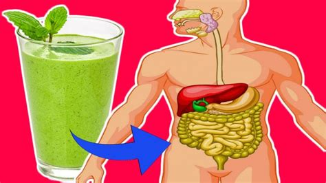 How To Detox If Ou Been Posioned by Flush Out Toxins From Your In Just 3 Days With These