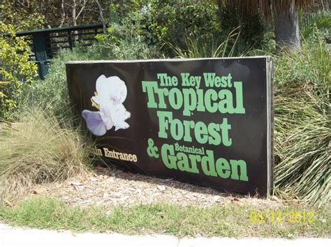 Key West Tropical Forest And Botanical Garden Tropical Forest The Key West Tropical Forest And Botanical Garden
