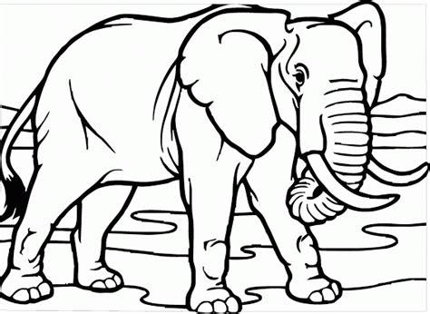 mewarnai gambar gajah tak nyata contoh anak paud
