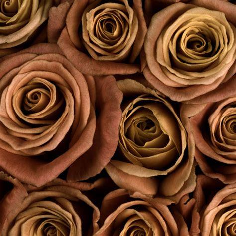 Diy Flower Vases Types Of Flowers For Weddings Bloomsbythebox Com
