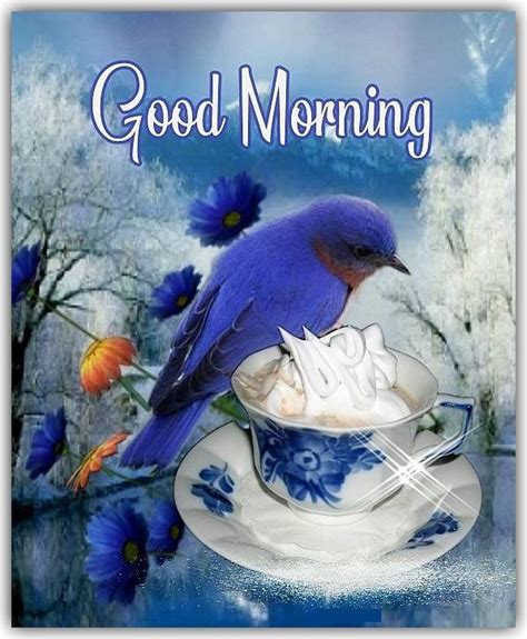 beautiful blue bird good morning quote pictures