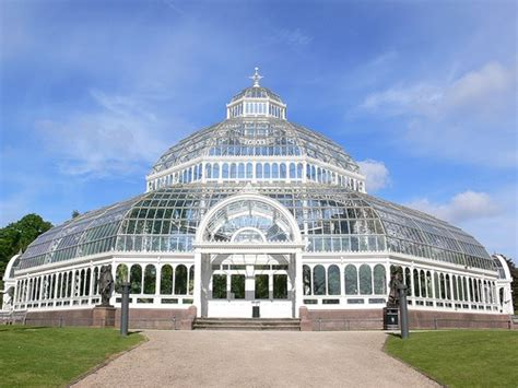 house palm quot palm house sefton park liverpool quot by eileen skinner at