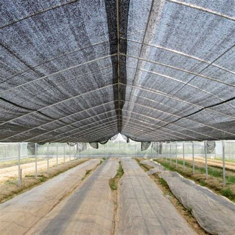 Jual Jaring Paranet jual paranet 65 lebar 3 meter grosir sumber plastik