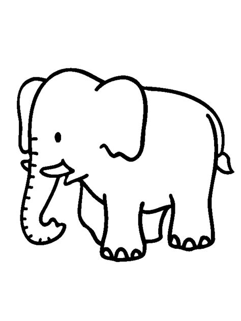 real elephant head coloring pages