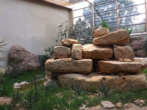 berlin zoo 2014 vogelhaus 2014 zoo berlin der beutelwolf