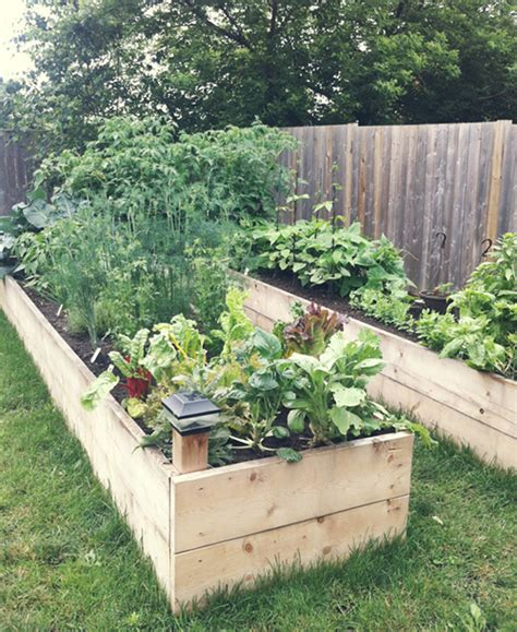 backyard raised garden garden inspiration april everydayapril everyday