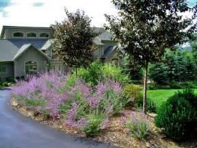 t t landscaping don t cut corners solomon s landscape design