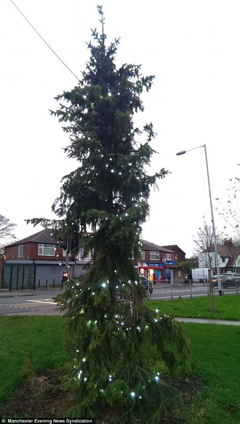 britain s worst christmas tree in brinnington is