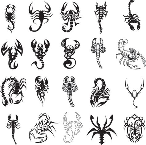 different scorpion tattoo ideas tattoos pinterest