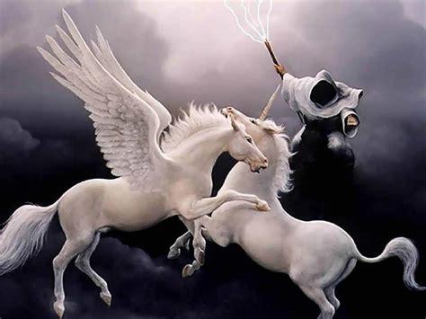 imagenes seres unicornio imagenes de unicornio