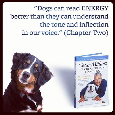 in our dogs books 17 best images about books worth reading on