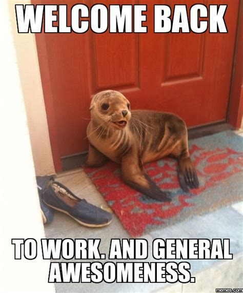 Welcome Back Meme - home memes com