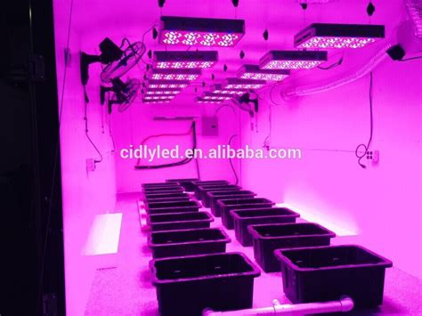 what is a grow light indoor plant grow light system kit greenhouse garden