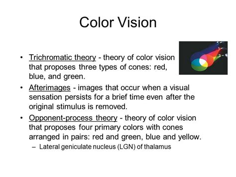 trichromatic theory of color vision sensation and perception ppt