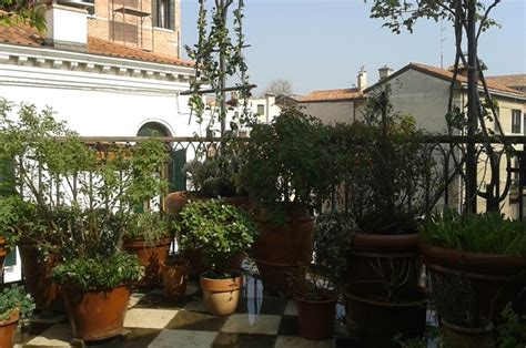 terrazze giardino manutenzione giardini a venezia cristian giardini