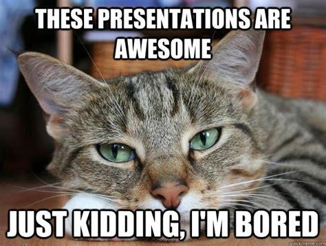 Boring Meme - bored cat memes image memes at relatably com