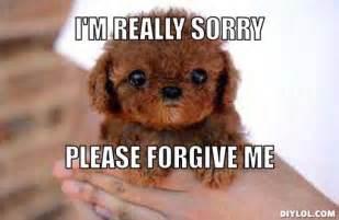 Forgive Me Meme - forgiving memes image memes at relatably com
