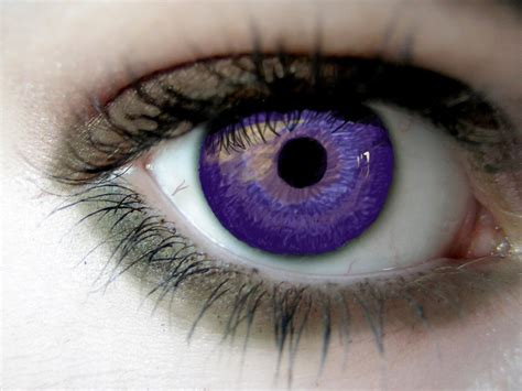 purple eye color best of nature alexandria genesis the most beautiful