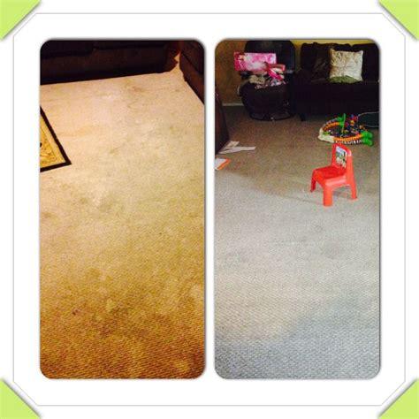 vinegar in rug doctor diy carpet cleaner for machine use 1 cup vinegar 1 3 of peroxide 1 3 baking soda and 1 3 borax
