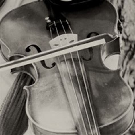 Suzuki Violin Lessons Suzuki And Traditional Violin Lessons For Children And Adults