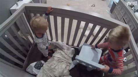 hilarious moment a cheeky toddler helps his